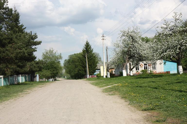 Сценарий проекта мое село 86
